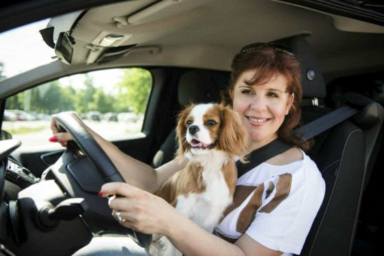 Distracted Driving: A Leading Cause of Car Accidents 7