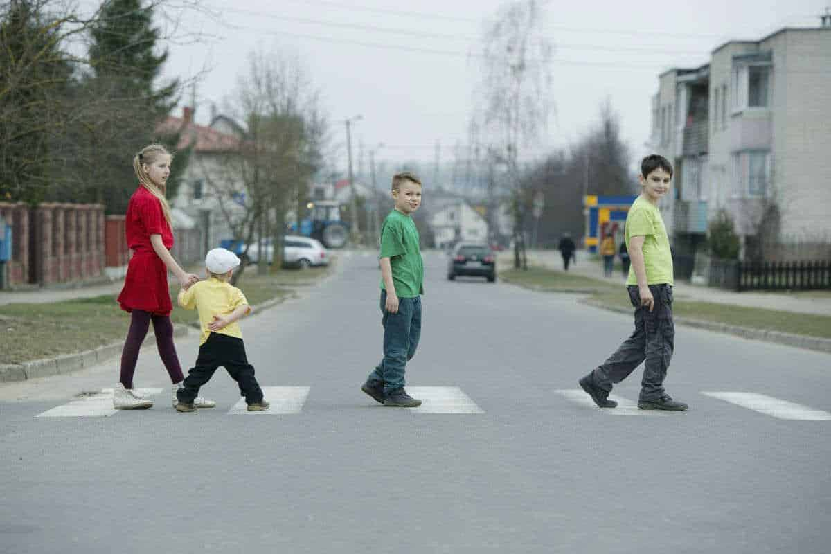 Child Pedestrians Vulnerable to Fatal Motor Vehicle Accidents 1
