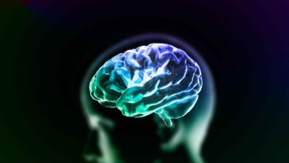 brain death lawyer chicago