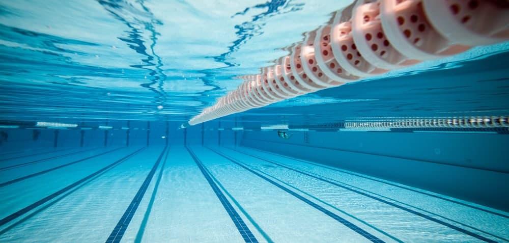 swimming pool drownings